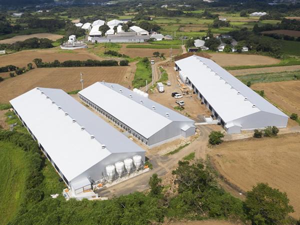 2019年に完成した新畜舎